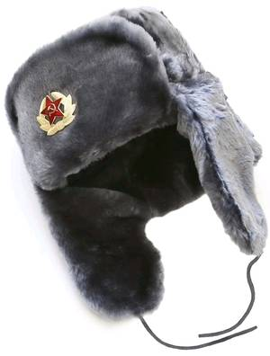 Russian ushanka winter hat. Gray